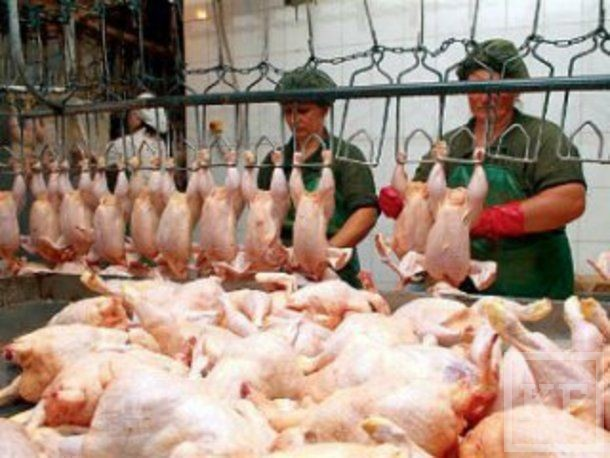 В России зафиксирован резкий рост розничных цен на мясо кур