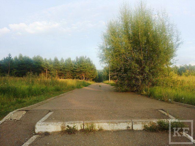 Во что казанские студенты превратили нижнекамский парк