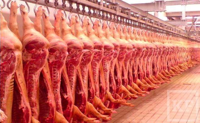 «Забойная» проблема нижнекамских фермеров: скот придется везти в город