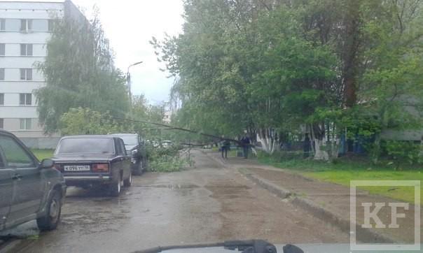 В Челнах сильный ветер повалил деревья и выбил окна на заводе «Камаза»
