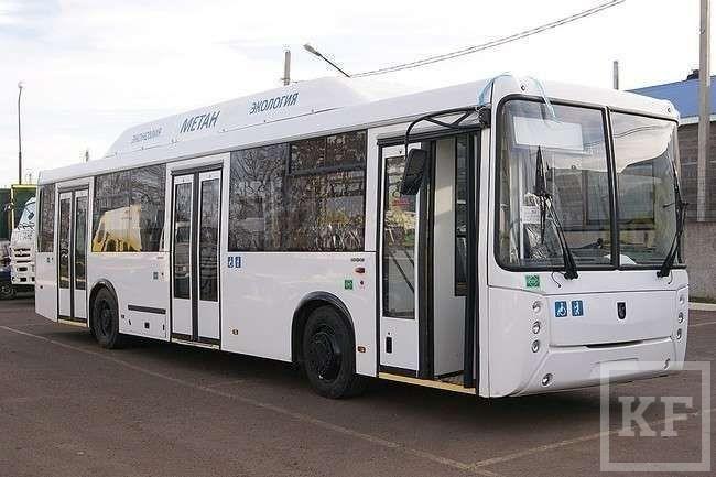 Транспортная революция в Челнах: нужны ли городу 190 больших автобусов?