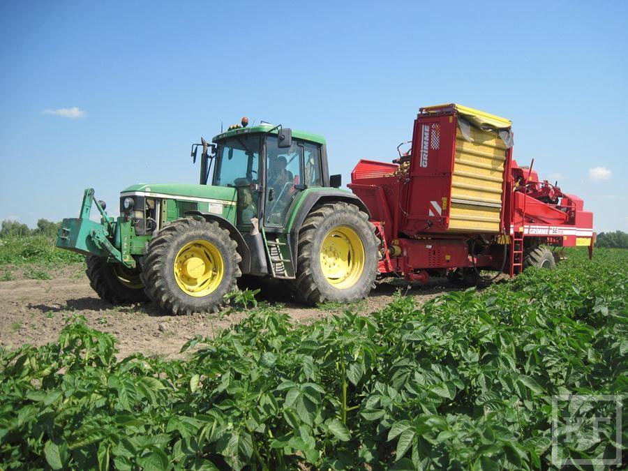 Министр сельского хозяйства РТ: «В этом году у нас не будет никаких проблем по овощам, по картофелю»
