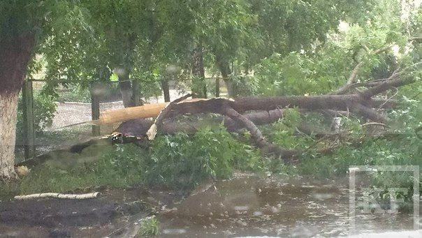 Первые последствия урагана в Набережных Челнах и Альметьевске
