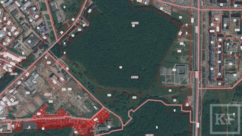 Общественники Казани нашли на кадастровой карте шесть участков под застройку в парках Ометьевского и Горкинского лесов