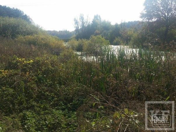 Поселок Октябрьский близ Казани попал в экологический скандал