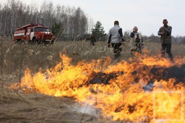 Нижнекамские дачники не готовы к пожароопасному лету