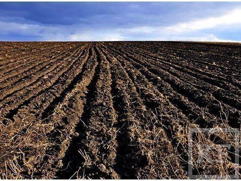 Как продавец земли искал себе «крышу» у заместителя прокурора Лаишевского района