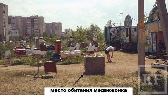 Волонтеры направили Шайхразиеву петицию о жестоком обращении с животными в зоопарке Челнов