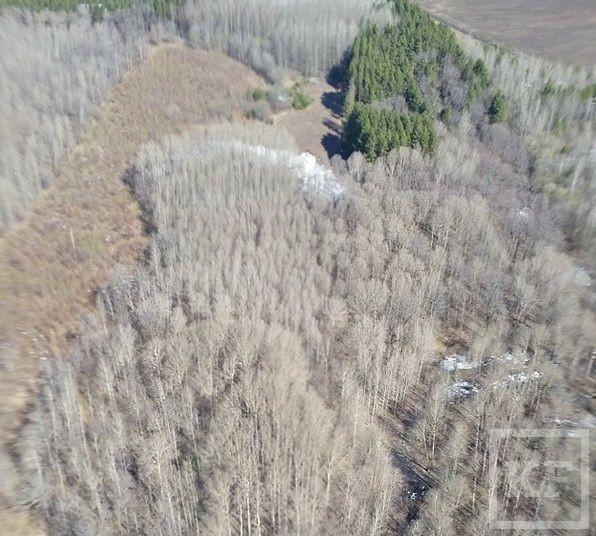 Минниханов опубликовал в Instagram фото татарстанских полей
