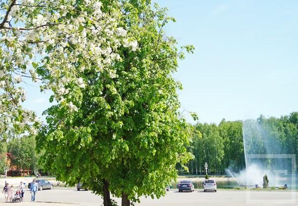 В Зеленодольске стартовал фотоконкурс лучших видов города