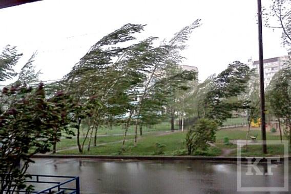 uragan-i-shval-v-Berdyanske