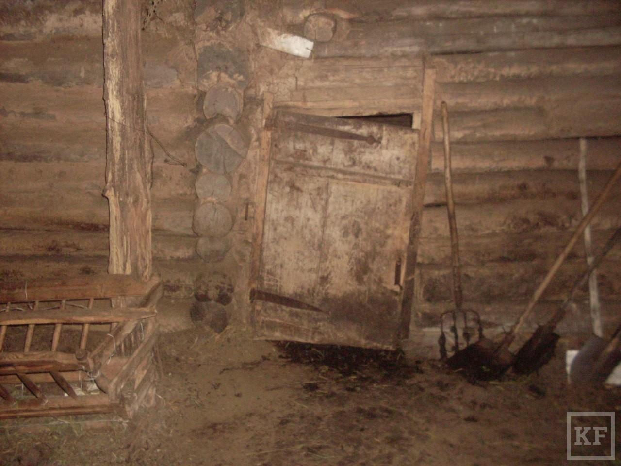 Житель Нижнекамского района заявил в полицию о пропаже свиньи, которая в действительности умерла в углу сарая