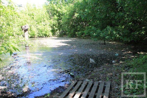 Министр экологии РТ Артем Сидоров: «Отвечать за загрязнение будет «АС менеджмент». Мы доведем это дело до конца»