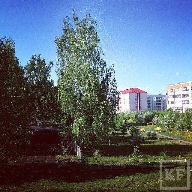Хэштег #доброеутротатарстан вошел в самые популярные тренды «Вконтакте»