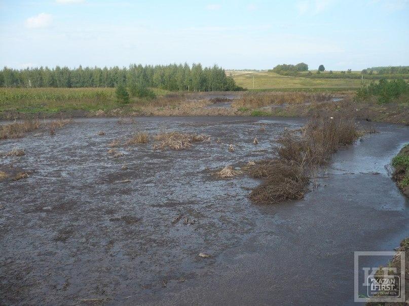 Как братьям Хайруллиным насчитали 13 млн рублей за экологический ущерб