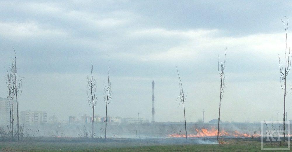 На пустыре рядом с торговым центром «Мега» горит трава