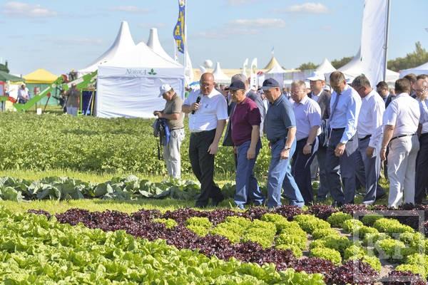 Татарстан может принять агрофорум «Федеральные Дни поля – 2017»