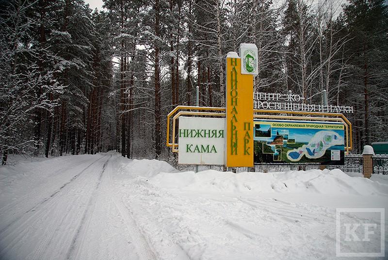 Вход в природные парки Татарстана может стать платным
