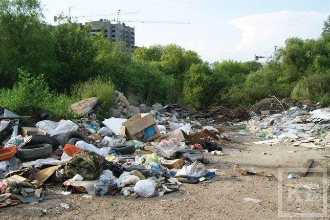 В Челнах может появиться муниципальный налог на мусор