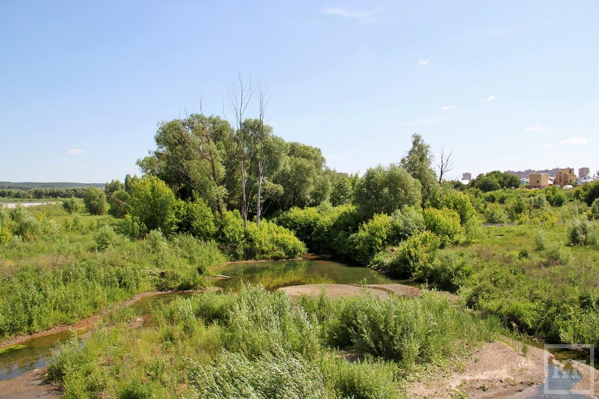Экологи: сохраняется высокий риск застройки многих зеленых зон в Татарстане