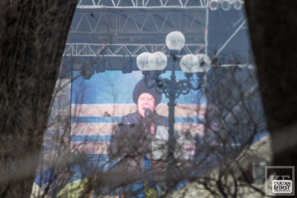 Антимайдан в Мариинском парке