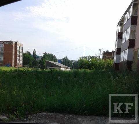 Жители Лениногорска жалуются на заросли бурьяна — «Народный контроль»