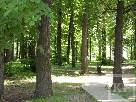 Как власти Зеленодольска оказались в центре скандала из-за парковых зон