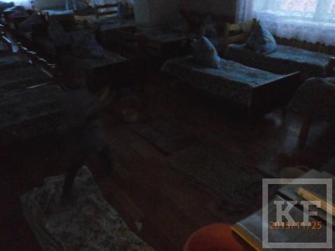 Воспитанники детсада в Бугульме спят под заплесневевшим потолком, поливающим «дождем»