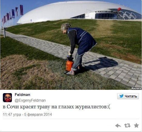 В Сочи к грядущей Олимпиаде решили покрасить траву