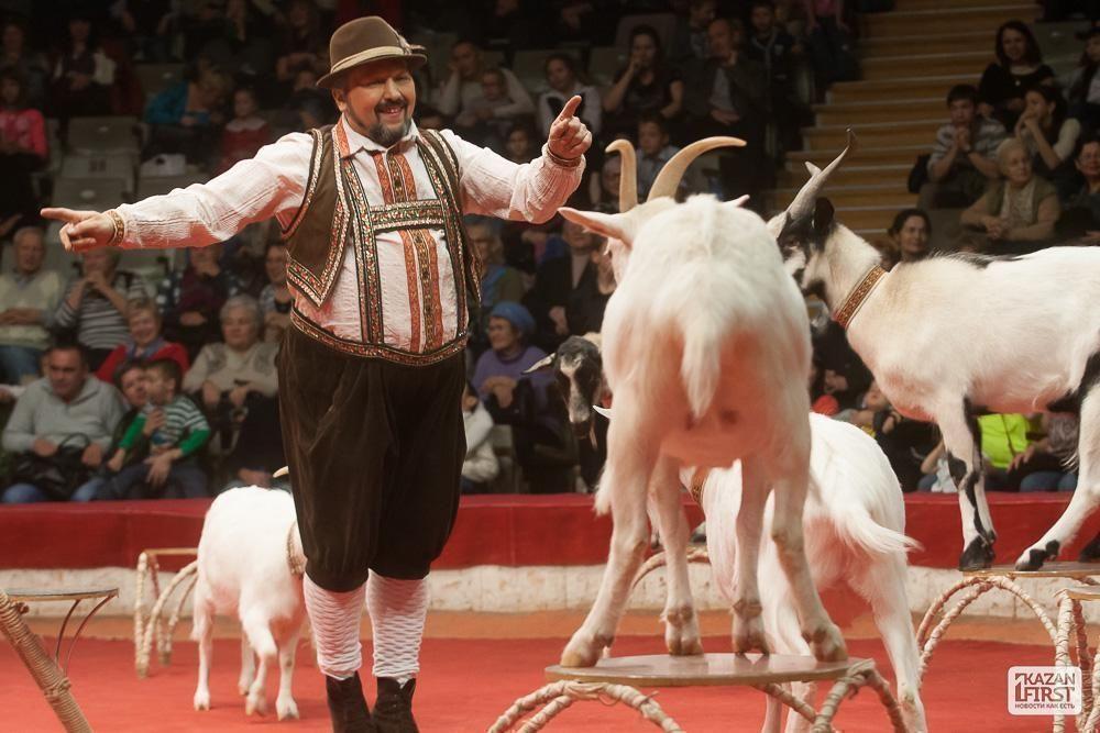 выступление никулина в цирке видео