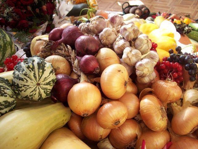 В Челнах пройдет ряд сельскохозяйственных ярмарок с заниженными ценами на продукты