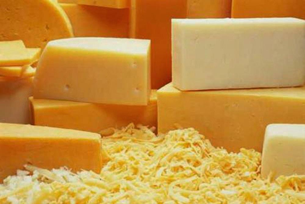 Минсельхоз РФ опроверг данные о 78% фальсифицированного сыра на рынке