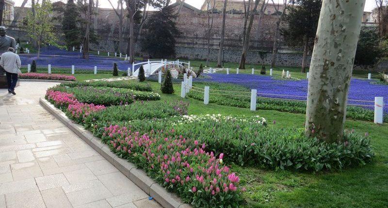 Работники «Горзеленхоза» Набережных Челнов вернулись из Турции с фестиваля тюльпанов