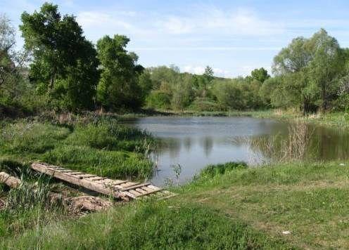рыболовные места в богородском районе