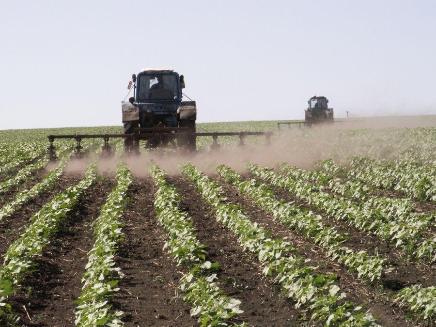 413 млн рублей получит Татарстан на развитие сельских территорий