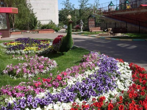 В этом году в Казани высадили 7,5 млн цветов