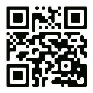 QR-коды установили на зданиях музеев и старинных объектов Елабуги