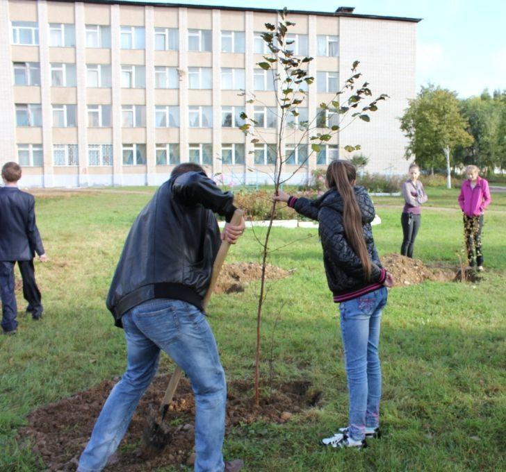 В Набережных Челнах посадят по дереву в память о каждом погибшем на войне жителе города