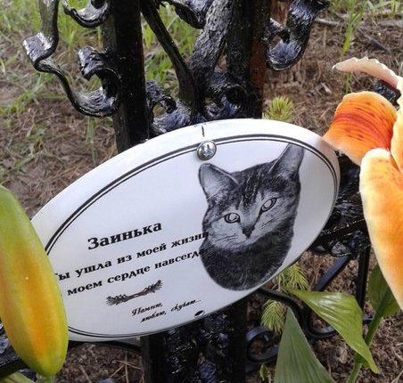 В Казани демонтировали могилу кошки, обнаруженную в парке Победы