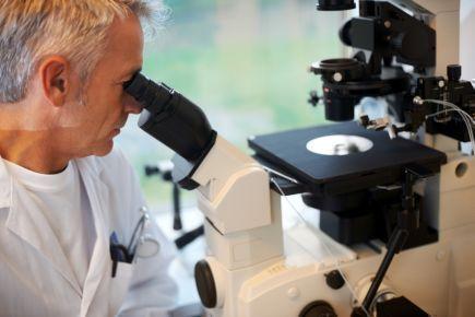 Учёные выяснили, как продлить срок службы кибернетической ткани, в основу которой положены нановолокна