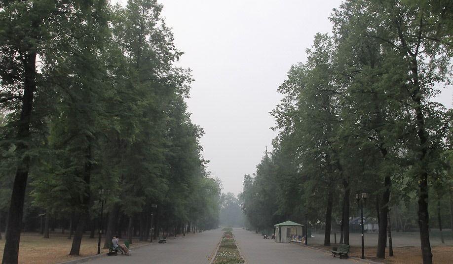 Реконструкция парка имени Горького начинается в Казани