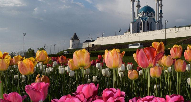 Казань украсят цветами насумму неменее 30 млн руб.