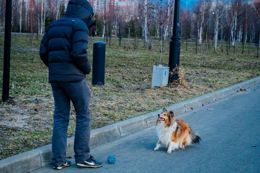 Куда жаловаться на бездействие полиции в татарстане ?