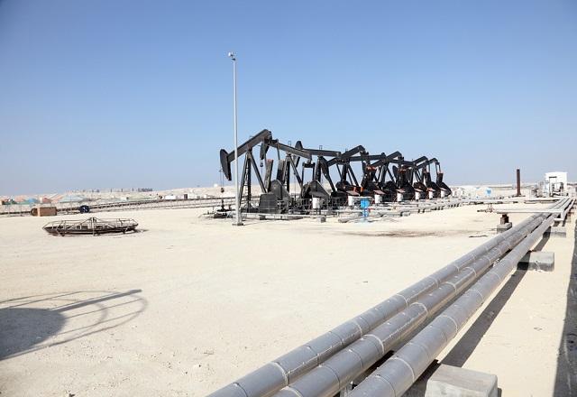 Власти Бахрейна пригласили компании Татарстана участвовать в общих проектах