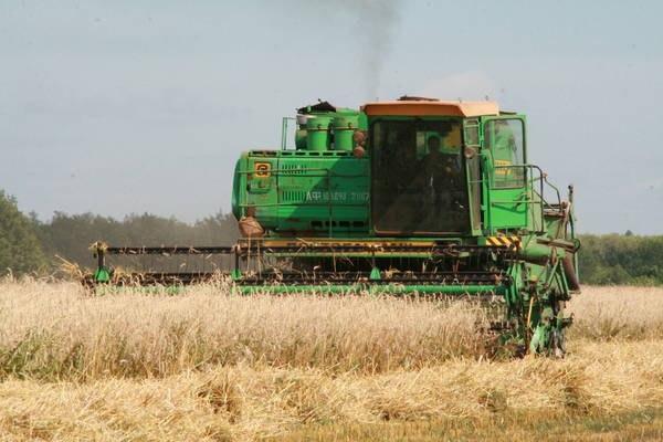 ВТатарстане намолотили 1-ый млн. тонн зерна